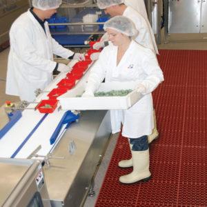 Anti-slip mat, werkvloermatten, keuken anti-slip, horeca mat, anti-slip horeca, 563 Sanitop Deluxe RED
