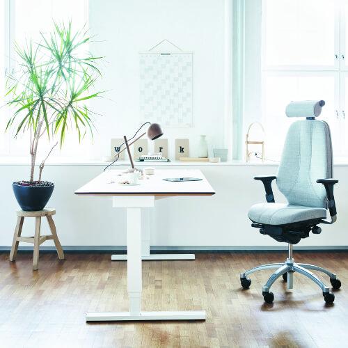 ergonomische werkplek